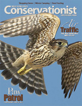 Conservationist magazine cover